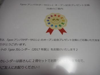 DSCN0620.JPG